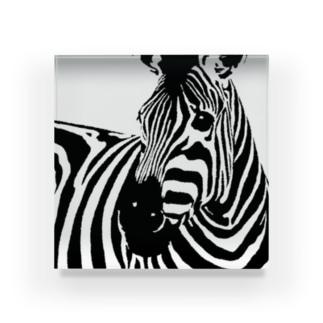 今日も鳴かない斑馬さん Acrylic Block