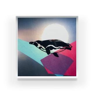 泳ぐペンギン Acrylic Block