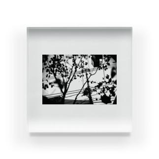 monochrome 電信柱 Acrylic Block
