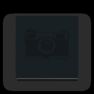 IZANAGIのレトロなカメラ Acrylic Block