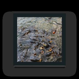 NYANGOROのパクパクコイ鯉 Acrylic Block