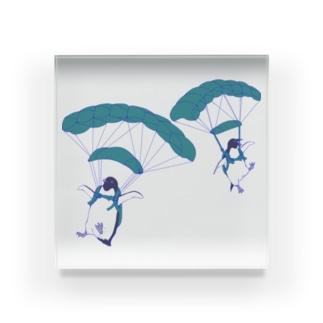 ペンギンスカイダイバーズ(飛行機なし) Acrylic Block