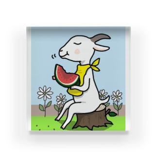 山羊さんの夏休み Acrylic Block