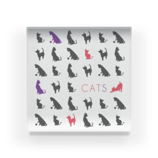 CATS pattern/grey Acrylic Block