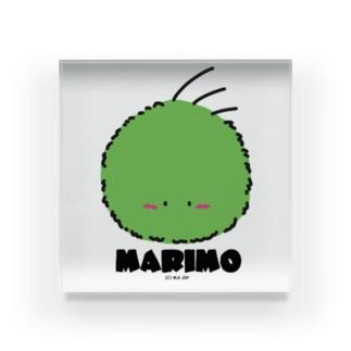MARIMO Acrylic Block