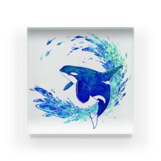 Blue World Children_orca blue design Acrylic Block