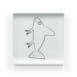 ニセエボシカメレオンダマシ#2 カメレオンフィッシュ(縦) Acrylic Block