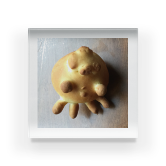 シェイモのクラゲちゃんパン Acrylic Block