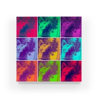 SAIGO-KEN Acrylic Block