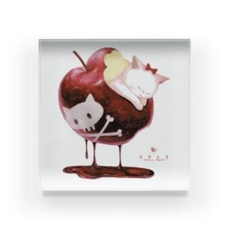 白猫姫 Acrylic Block