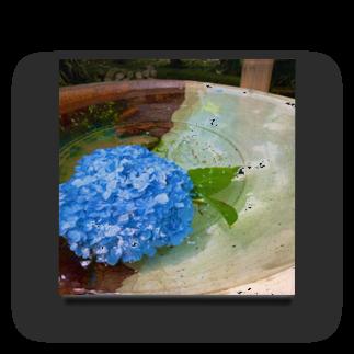 つゆりらぼの水紫陽花 Acrylic Block