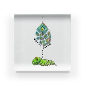 芋虫の夢 Acrylic Block