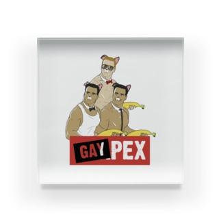 GAYPEX Acrylic Block