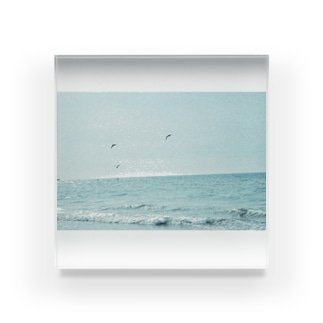 海カラス Acrylic Block