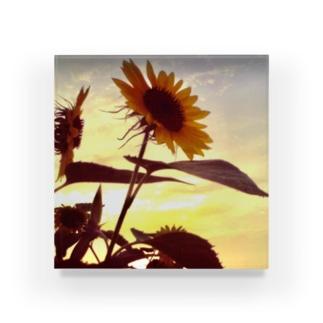 トイデジ 夏の終わり~ひまわり~ Acrylic Block