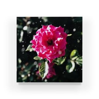 咲き誇るは花の如し Acrylic Block