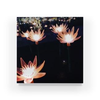 光の蓮 Acrylic Block