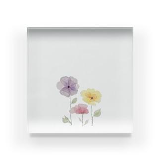 水彩ポピー Acrylic Block