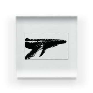 THE WHALE(クジラ) Acrylic Block