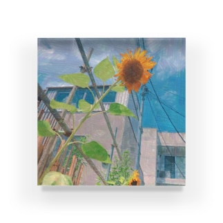「ひまわり」 Acrylic Block