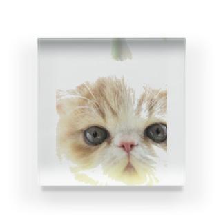photo-tkのBaby ちまきくん Acrylic Block