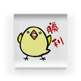 小鳥 Acrylic Block