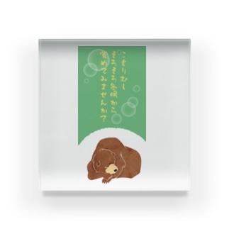 こもりむし中の冬眠クマ Acrylic Block