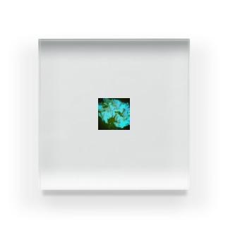 シクラメン…白 Acrylic Block