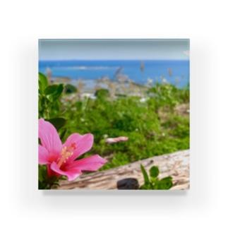 沖縄の花 Acrylic Block