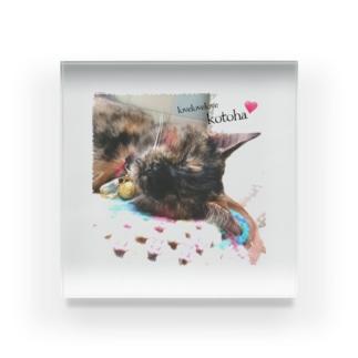 保護猫チャリティ🐾 Acrylic Block