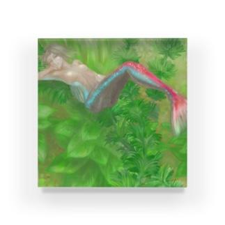 ネオンテトラ人魚 Acrylic Block