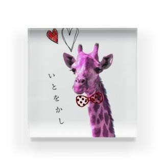 きりん〜趣〜 Acrylic Block