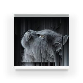 spes Acrylic Block