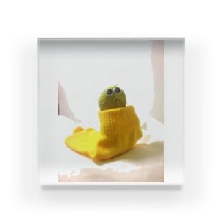凛としたスネチャン Acrylic Block