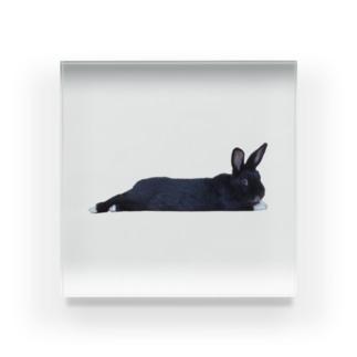 うさぎのSherry Acrylic Block