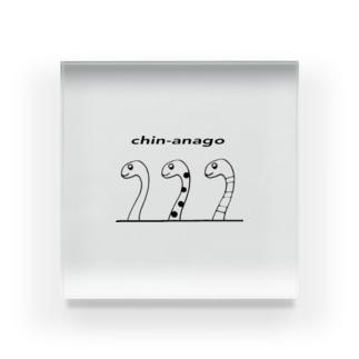 chin-anago Acrylic Block