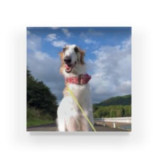 takagimaiの愛犬 Acrylic Block
