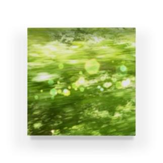 森へ(きらきら) Acrylic Block