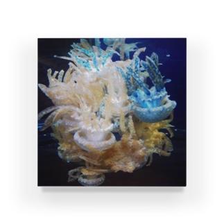 KURAGE_tree Acrylic Block