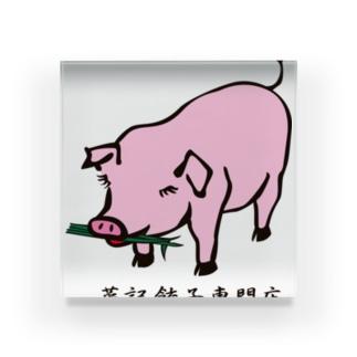 菜記餃子 可愛いブタさん Acrylic Block