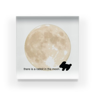 🐇 there is a rabbit in the moon. Acrylic Block