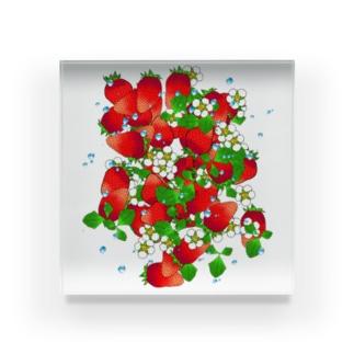 フレッシュ☆ストロベリー Acrylic Block
