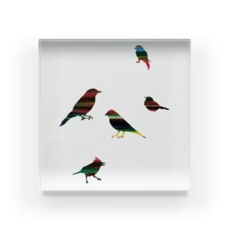 KAERUCAFE SHOPの虹のバード Acrylic Block