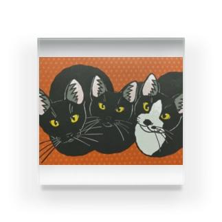 3匹の子猫 ブロック Acrylic Block