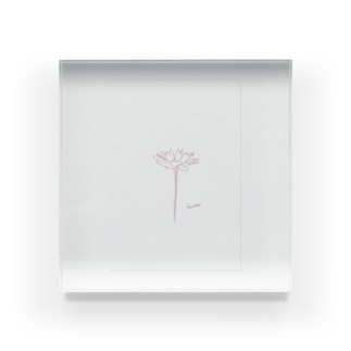 rilybiiの*ピンクマーガレット* Acrylic Block