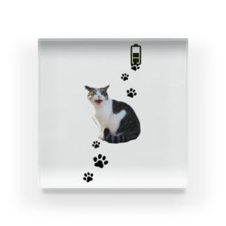 あくびネコ~充電したい~ Acrylic Block
