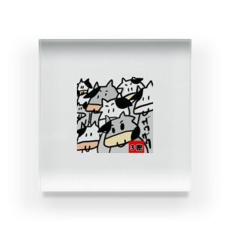3密の牛 Acrylic Block