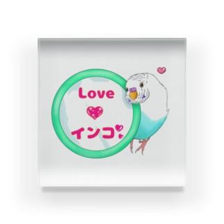 Lily bird(о´∀`о)の鏡大好きピーコちゃん ロゴ入り① Acrylic Block