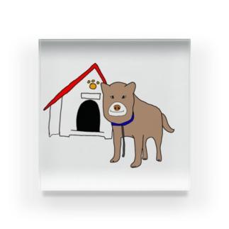 顔が四角い犬🐶 Acrylic Block