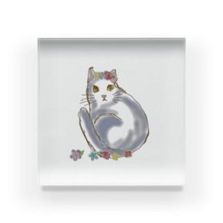 AKのお花でふて猫 Acrylic Block